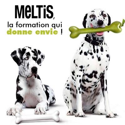 meltis