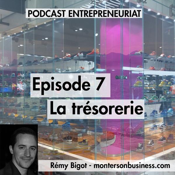 Podcast 7 : la trésorerie d'une entreprise