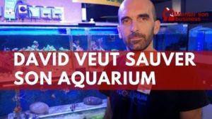 Sauver aquarium crise aquarium limoges